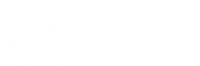 FDI China Logo White png
