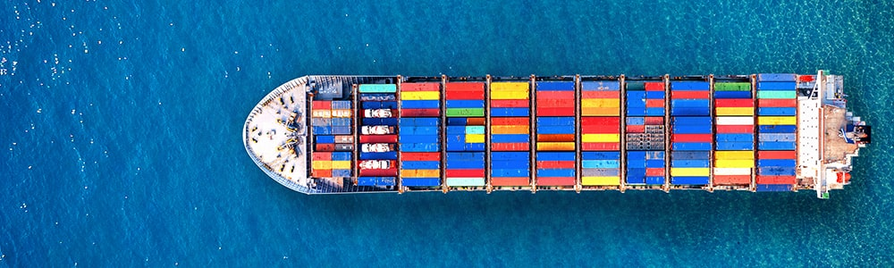 import export license